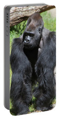 Silverback Gorilla At The San Francisco Zoo San Francisco California 5d3182 Portable Battery Charger