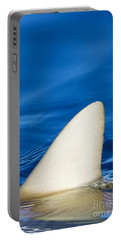 Simple Shark Fin Portable Battery Charger