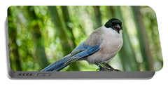 Portable Battery Charger featuring the photograph Sing Out Loud by Judy Kay