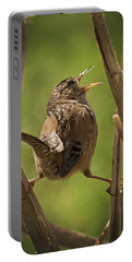 Singing Marsh Wren Portable Battery Charger