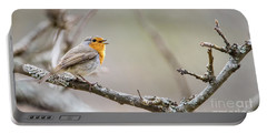 Singing Robin Portable Battery Charger by Torbjorn Swenelius