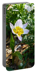 Portable Battery Charger featuring the photograph Single Flower - Simplify Series by Carla Parris