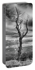 Single Tree In Black And White Portable Battery Charger