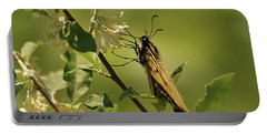 Portable Battery Charger featuring the photograph Sipping In The Shade by Susan Capuano