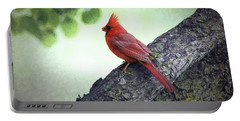 Sir Cardinal Portable Battery Charger