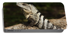Sir Iguana Mexican Art By Kaylyn Franks Portable Battery Charger