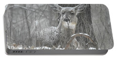 Portable Battery Charger featuring the photograph Sitting Out The Storm by Michael Peychich