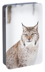 Portable Battery Charger featuring the photograph Sitting Pretty by Alex Lapidus