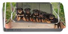 Six Rottweiler Puppies Lined Up On A Swing Portable Battery Charger