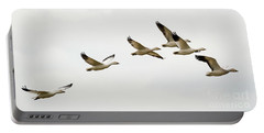 Portable Battery Charger featuring the photograph Six Snowgeese Flying by Mike Dawson