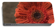 Skc 5127 The Heart Of The Gerbera Portable Battery Charger by Sunil Kapadia