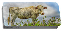 Skinny Cow Portable Battery Charger