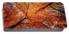 Sky Roots In Forest Red Portable Battery Charger