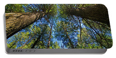 Portable Battery Charger featuring the photograph Skyward by Gary Lengyel