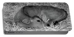Sleeping Calf Portable Battery Charger