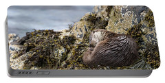 Sleeping Otter Portable Battery Charger