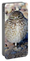 Sleepy Burrowing Owl Portable Battery Charger