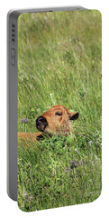 Portable Battery Charger featuring the photograph Sleepy Calf by Alyce Taylor