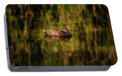 Portable Battery Charger featuring the photograph Sleepy Duck, Yanchep National Park by Dave Catley