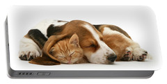 Sleepy Ginger Pals Portable Battery Charger
