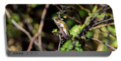 Sleepy Hummingbird Portable Battery Charger