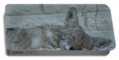 Sleepy Li'l Coyote Portable Battery Charger by Anne Rodkin