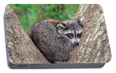 Portable Battery Charger featuring the photograph Sleepy Raccoon Sticking Out Tongue by Rob Sellers