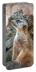 Portable Battery Charger featuring the photograph Slender-tailed Meerkat by Hanny Heim