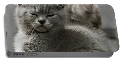 Slumbering Cat Portable Battery Charger by Evgeniy Lankin