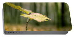 Small Branch With Yellow Leafs Close-up Portable Battery Charger