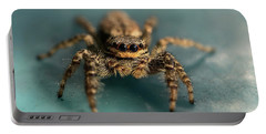 Small Jumping Spider Portable Battery Charger