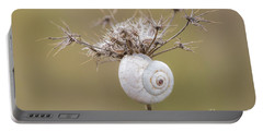 Small Snail Shell Hanging From Plant Portable Battery Charger