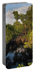 Small Waterway In Vitolo Preserve, Hutchinson Isl  -29151 Portable Battery Charger