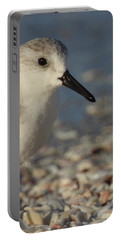 Smallest Bird Portable Battery Charger