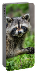 Smiling Raccoon Portable Battery Charger