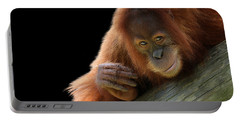Cute Young Orangutan Portable Battery Charger