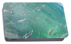 Portable Battery Charger featuring the photograph Snappa Fish, Pacific Ocean by Yurix Sardinelly