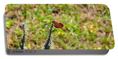 Portable Battery Charger featuring the photograph Shimmering Saddlebags by Al Powell Photography USA