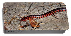 Portable Battery Charger featuring the photograph Snazzy Snake by Al Powell Photography USA