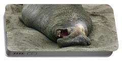 Portable Battery Charger featuring the photograph Snoring Elephant Seal by Anthony Jones