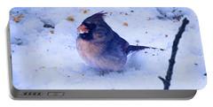 Snow Bird Portable Battery Charger