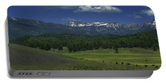 Snow Capped Mountains 3 Portable Battery Charger