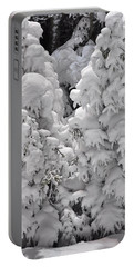 Portable Battery Charger featuring the photograph Snow Coat by Alex Grichenko