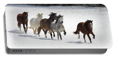 Snow Gallop Portable Battery Charger