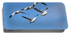 Snow Geese Flormation Portable Battery Charger