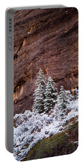 Snow Globe Portable Battery Charger by Dustin LeFevre