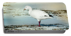 Portable Battery Charger featuring the photograph Snow Goose - Frozen Field by Robert Frederick