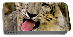 Snow Leopard 2  Portable Battery Charger