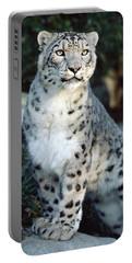 Snow Leopard Uncia Uncia Portrait Portable Battery Charger