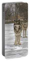Portable Battery Charger featuring the photograph Snow Mates by Shari Jardina
